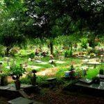 Cemitério São Pedro - Vila Alpina