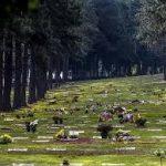 Cemitério Jardim da Colina