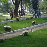 Cemitério Necrópole Campo Santo - Vila Rio