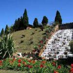 Cemitério Vale dos Pinheirais