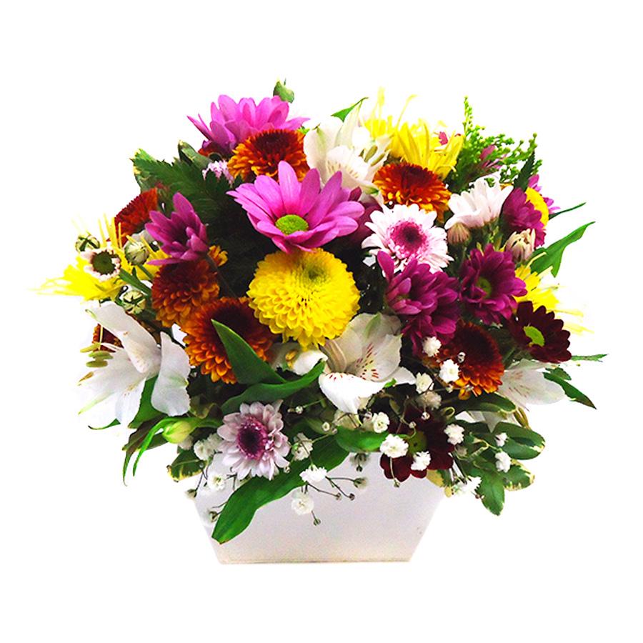 Floricultura Mandaqui