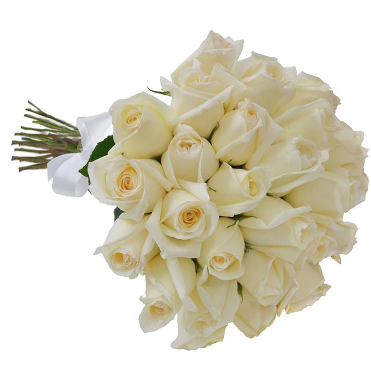 Buque 30 rosas Brancas