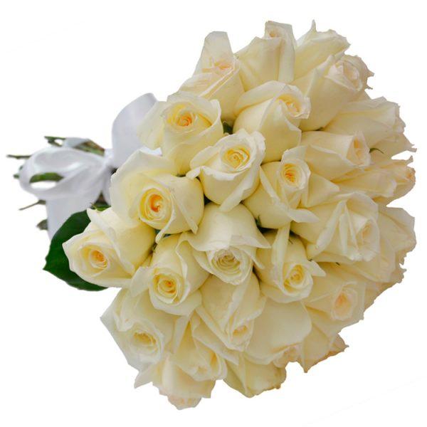 Buque 36 rosas brancas