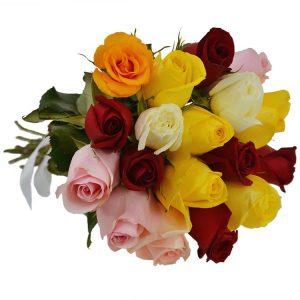 Buque 18 rosas coloridas