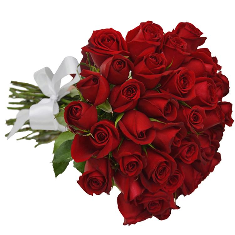 Buque 30 rosas vermelhas