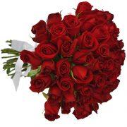 Buque 36 rosas Vermelhas
