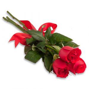 Floricultura SP