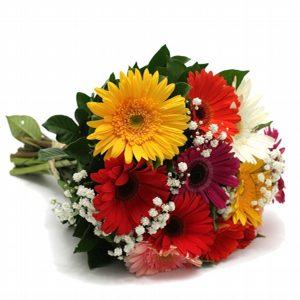 Floricultura Canindé - SP