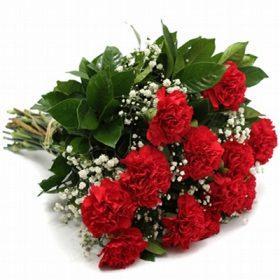 Floricultura em Diadema