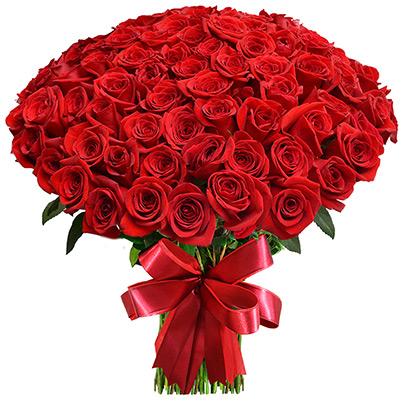 Buquê de Rosas com 72 Rosas Vermelhas